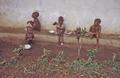 1968 3 Nigeria CDC.png