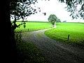 2.01 km Jakobsweg.jpg