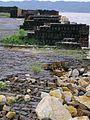 2004-05-22 Inujima,犬島 273.jpg