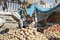 2009 Herat Afghanistan boys 4072197709.jpg