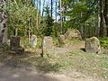 2014 Pfälzerwald 076 Ritterstein 238 Lolosruhe.JPG