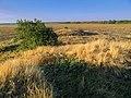 2015-09-18 - panoramio.jpg