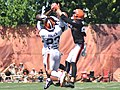 2015 Cleveland Browns Training Camp (20252783921).jpg
