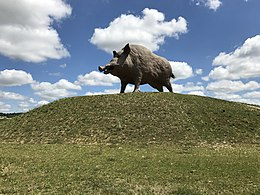 2017-07-04 Woinic - The worlds largest boar 3.jpg