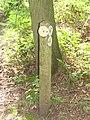 2018-05-14 Waymarker posts, Woodland footpath, Northrepps (2).JPG