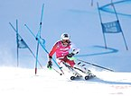 2020-01-15 Round of 16 Alpine skiing Parallel Mixed Team Event (2020 Winter Youth Olympics) by Sandro Halank–010.jpg