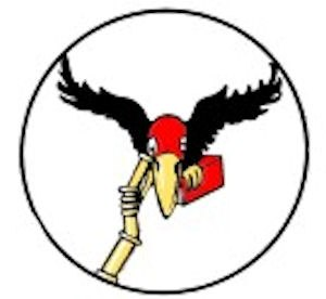 101st Bombardment (Photographic) Squadron - 39th Observation Squadron emblem