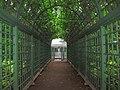 5677. St. Petersburg. Summer Garden.jpg