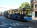 613 TCC - Flickr - antoniovera1.jpg