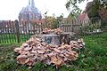 7041 's-Heerenberg, Netherlands - panoramio (137).jpg