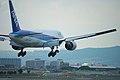 ANA B777-281(JA8968) landing @ITM RJOO (1448121857).jpg