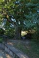 AT-122319 Gesamtanlage Augustinerchorherrenkloster 068.jpg
