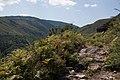 A Cañiza, Pontevedra, Spain - panoramio (7).jpg