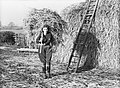 A Land Girl carrying a large forkful of hay in order to feed cattle at the Women's Land Army training centre at Cannington in Somerset during 1940. D204.jpg