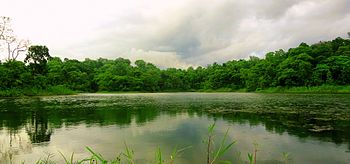 A Small Lake nearby Johilla river.jpg