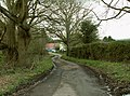 A dead-end country lane called Mill Hill - geograph.org.uk - 747256.jpg