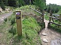 A new cycle trail - geograph.org.uk - 1291460.jpg
