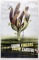 A plant with fingers growing out of the stem. Colour lithogr Wellcome L0026435.jpg