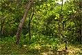 Abandoned campsite - panoramio.jpg