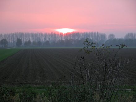 Sunset near the Lower Rhine Abendsonne über Glehn.JPG