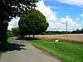 Access road to Fisher's Farm, near Shefford Woodlands - geograph.org.uk - 922374.jpg