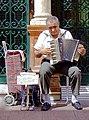 Accordion Player Seville.jpg