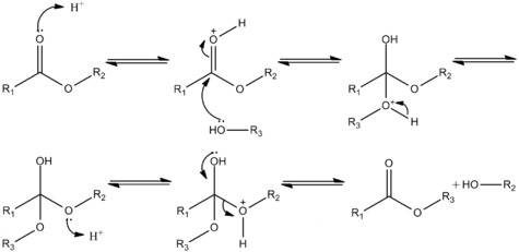 Acid-catalysed transesterification.png