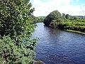 Afon Rheidol - geograph.org.uk - 510909.jpg