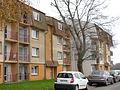 Aire-sur-la-Lys - Public housing Rue Bauduin V - 1.JPG