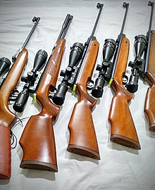Best scope for air rifle Reviews
