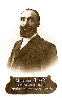Albert Marcelin.jpg