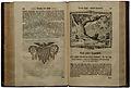 Alkmar, H. von (1752) © Foto H.-P.Haack.jpg