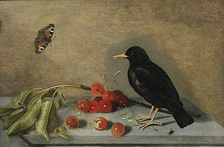 Blackbird, Butterfly and Cherries