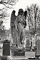 Angel (32538875498).jpg