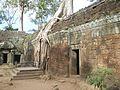 Angkor 7.jpg