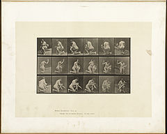 Animal locomotion. Plate 527 (Boston Public Library).jpg