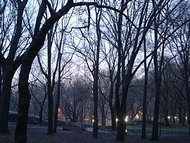 Anochecer en Central Park.JPG
