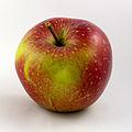 Apfel-Wellant.jpg