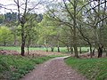 Approaching Seven Springs Picnic Area - geograph.org.uk - 407105.jpg
