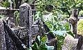 Armero cementerio.jpg