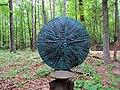 Art in the Garden Hillsborough NC 3656 (35336287723).jpg