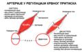 Arterije i krvni pritisak.PNG