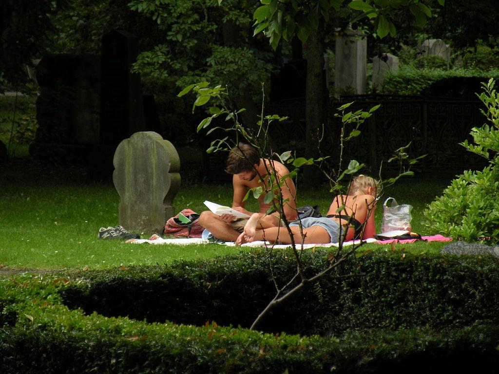 Cimetière pendant l'été - Photo de Pedro Cambra