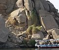 Aswan - Philae Nile transportation.jpg