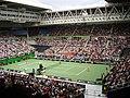 Australian Open 2007. Elena Dementieva playing Nicole Vaidišová.jpg