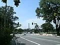 Avenida Pedro Alvarez Cabral - Parque do Ibirapuera - panoramio.jpg