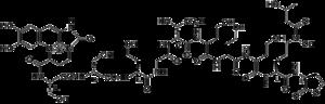 Siderophore - Azotobactin, a mixed-ligand siderophore