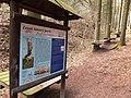 Březová nad Svitavou, Lesní lanový park (1).jpg