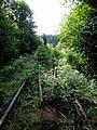 Bahnstrecke Max und Moritz - panoramio.jpg