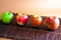 Baking apples, from left to right, Granny Smith, Pink Lady, Braeburn, Fuji (4106931757).jpg